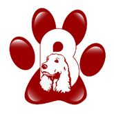 Boomer's Pet Treats Logo